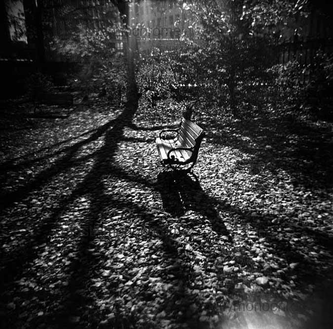 Empty bench in sun